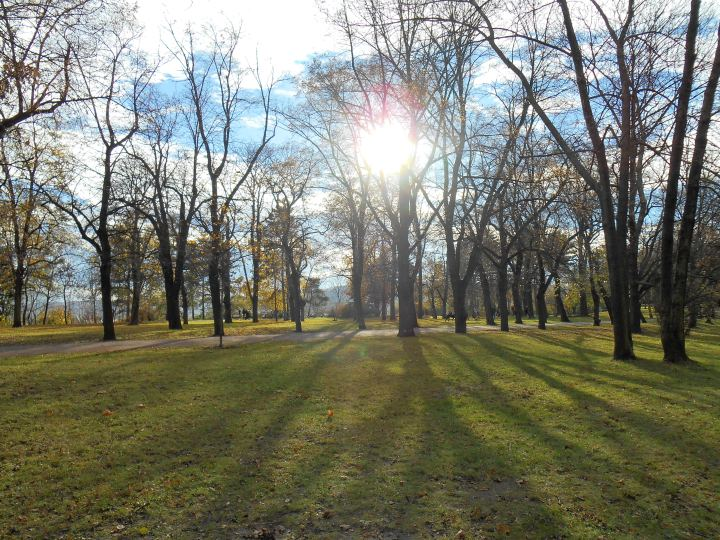 Autumn in Letna Park